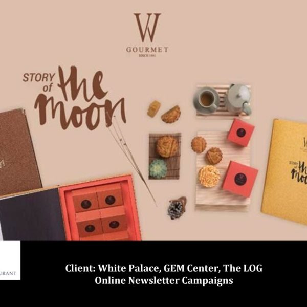 Newsletter campaign designs for email marketing
